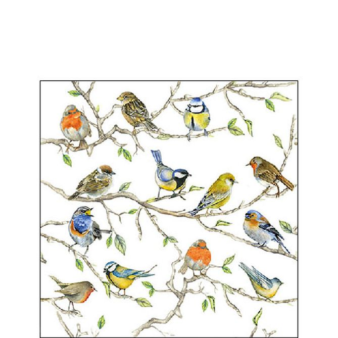 Serviette Birds Meeting