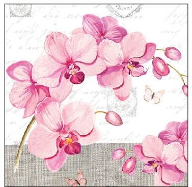 Serviette Orchids With