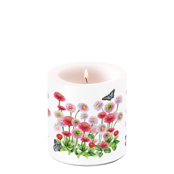 Candle Small Bellis