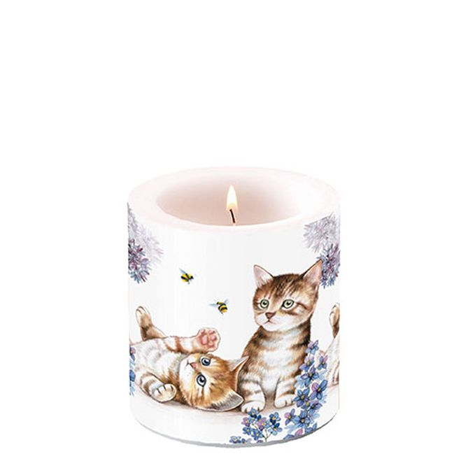 Candle Small Cats And